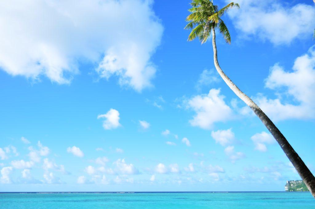 ハワイに短期留学