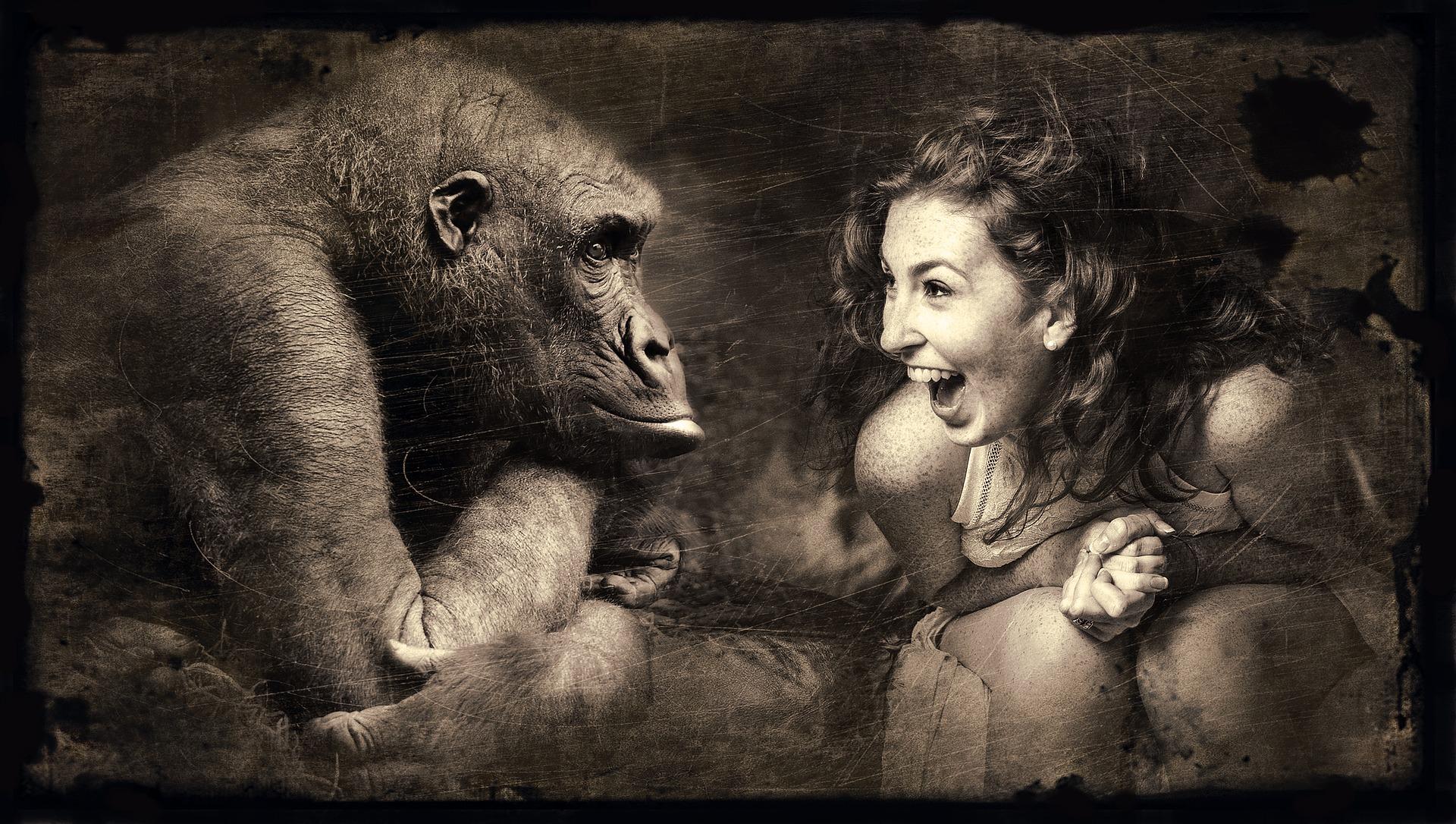 構成します 猿 女性 · Pixabayの無料写真