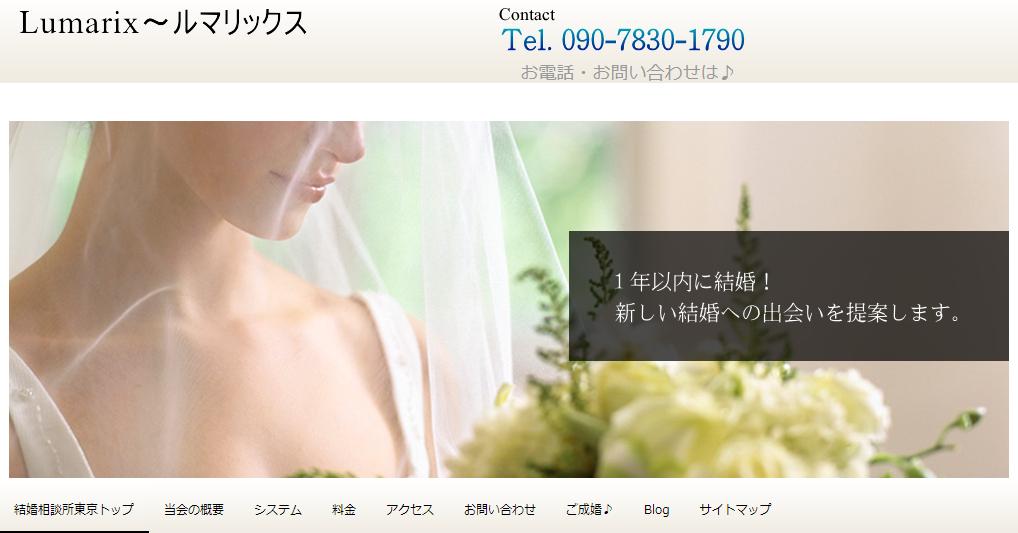 screenshot 東京ルマリックス